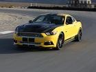 """Shelby GT Mustang 2015 có giá """"chát"""""""