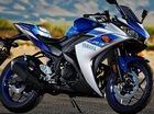 Mô tô thể thao giá hấp dẫn Yamaha R3 có thể sắp ra mắt tại Việt Nam