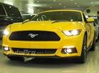 Ford Mustang 2015 - Cơn sốt mới trong giới chơi xe Việt Nam
