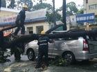 Sài Gòn lại mưa trắng trời, cây xanh gãy đổ khắp nơi