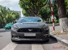"""Tóm gọn """"ngựa hoang"""" Ford Mustang GT 5.0 trên phố Hà Nội"""