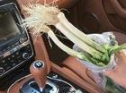 Đâm xe ba bánh vào xe sang Bentley, người bán rau đền bù bằng... túi hành