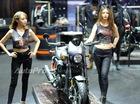 TRỰC TIẾP: Harley-Davidson mang hàng khủng Street Rod 2017 và Street Glide tới VMCS 2017