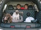 Nissan X-trail phiên bản đặc biệt dành cho người yêu chó