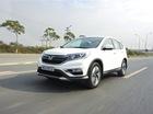 Honda chưa tính đến chuyện nhập khẩu CR-V và City