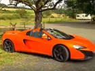 """Con lừa nhai cản va siêu xe McLaren 650S Spider vì tưởng là cà rốt, chủ trang trại """"đền ốm"""""""
