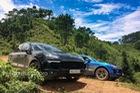 Porsche Cayenne Platinum - chiến mã