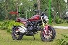 Chi tiết City Hunter - Xe côn tay 110cc giá 33 triệu đồng tại Hà Nội