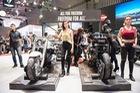 Không có triển lãm xe máy Việt Nam, Ducati và Harley-Davidson lần đầu đứng chung sân chơi tại Hà Nội