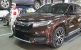 Honda Avancier - đàn anh CR-V bất ngờ xuất hiện tại đại lý ở Việt Nam