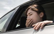 Ám ảnh vì chứng say xe mỗi dịp Tết thì đừng bỏ qua những mẹo khắc phục cực hữu ích này