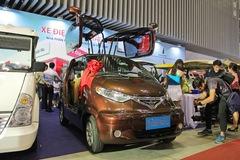 Thợ Việt đi quảng bá xe điện tự chế, dùng cửa cánh chim như Tesla và logo kiểu Toyota