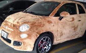 """Fiat 500 bọc lông: Chỉ cần nhìn đã thấy """"phát ngốt"""""""