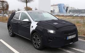 Kia phát triển crossover Ceed nhỏ hơn Sportage
