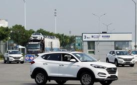 Hyundai cân nhắc xây nhà máy sản xuất ô tô tại Việt Nam