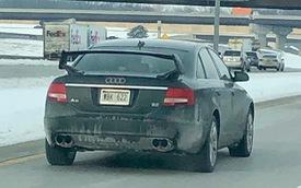 Oái oăm dân chơi độ xe sang Audi để giống... xe thường Subaru