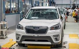 Subaru Forester 2019 nhập khẩu Thái Lan lộ giá bán từ 1,128 tỷ đồng - lời đe dọa tới Honda CR-V và Mazda CX-5
