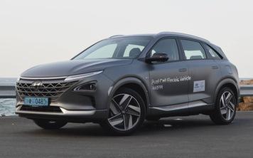 Hyundai, Kia quyết tâm đi ngược hướng thị trường