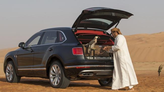 Nhà giàu Trung Đông mua hẳn Bentley Bentayga phiên bản giới hạn phục vụ thú... chơi chim