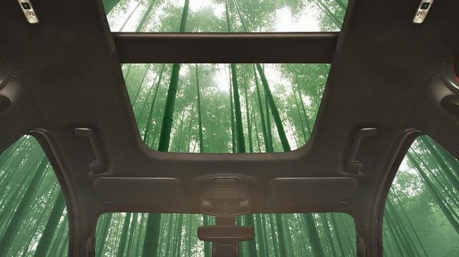 Tre được ứng dụng vào sản xuất xe ô tô